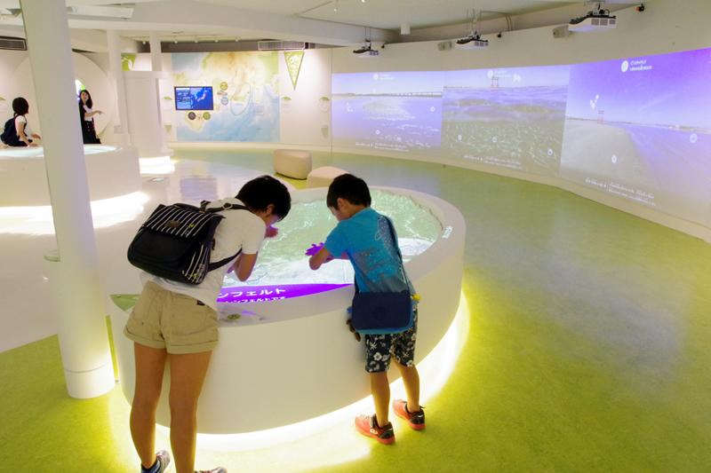 浜松科学館 みらいーら 1階 自然ゾーン